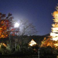 秩父宮記念公園 2017年12月3日